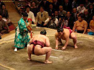 large_sumo_wrestling_tokyo